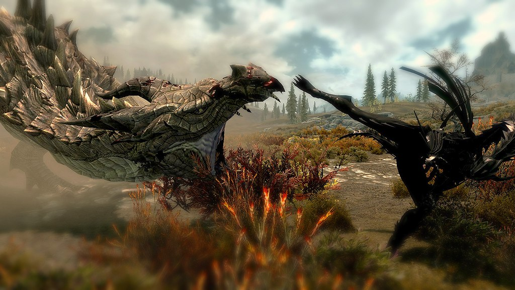 The World's Best Photos of knight and skyrim - Flickr Hive Mind