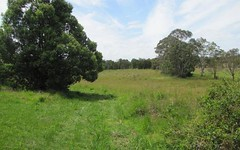 Lot 55 Foxs Lane, Tyagarah NSW