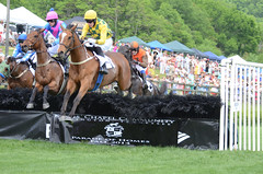 2014 Iroquois Steeplechase Second Race