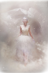 ( ) Tags: wedding light sunset portrait sky bw woman white abstract sexy art love nature water fog writing canon vintage studio landscape photography eos feathers taiwan floating retro yarn angels snowangels creating airbrush hitthelights      womansurnamedphotographer