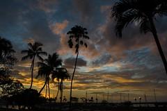 Sunset from Haleiwa Joe's (badnewf) Tags: hawaii oahu northshore haleiwa haleiwaboatharbor