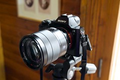 camera sony mirrorless sonya7