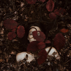 (Alessio Albi) Tags: red portrait woman color beauty crimson leaf bed woods albi