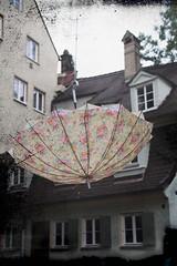 Regenschirm (rosa_rusa) Tags: paraguas augsburg regenschirm domviertel augsburgo rosarusa