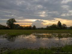 Schwalmstadt am Abend (Oliver Deisenroth) Tags: sunset sky landscape dusk himmel landschaft