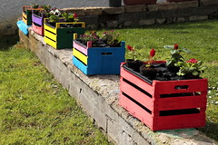 Primavera (lumun2012) Tags: lucio mundula colours colore
