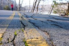 Return Trip (derekbruff) Tags: radnorlake leadinglines path road walk yellowline