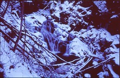 (✞bens▲n) Tags: pentax lx fa 35mm f2 film slide velvia 100 at200 japan waterfall snow winter