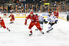 "Missouri Mavericks vs. Allen Americans, March 3, 2017, Silverstein Eye Centers Arena, Independence, Missouri.  Photo: John Howe / Howe Creative Photography • <a style=""font-size:0.8em;"" href=""http://www.flickr.com/photos/134016632@N02/33117917592/"" target=""_blank"">View on Flickr</a>"