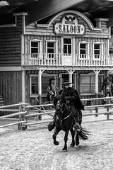 His name is Zorro (cornelis1980) Tags: black white monochrome horse zorro western theme fujifilm xt2 fujinon xf 1855 mm f284 beautiful picture action cowboy pony park city