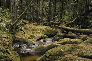 Roberts Creek