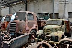 collezione righini (riccardo nassisi) Tags: collezione righini rust rusty scrapyard collection camion truck ruggine epave alfa romeo 950 900 fiat old car auto