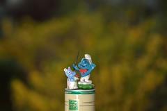 spielerei (3) (fdfotografie) Tags: spielrei schlumpf dirigentenschlumpf figuren miniaturen blau weis klein plastik nahaufnahme freistellen freistellung bokeh dslr farbfoto querformat indooroutdoor daylightflash tageslichtblitz freundlich humor blumenstraus d7100 spielzeug masterflash slaveflash