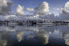 Reflections for Days (pixelmama) Tags: 2016 california chulavista cloudporn clouds gettymoments jstreetmarina reflections sunrise marina southerncalifornia