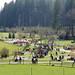 2017-03-26 Bergtierpark Blindham 035