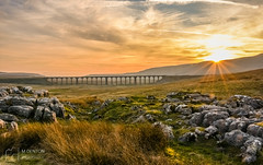 A Ribblehead Viaduct Sunset (mikedenton19) Tags: ribble ribblehead viaduct ribblesdale northyorkshire yorkshiredalesnationalpark dales nationalpark sunset bridge