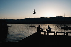 Contemplation (Ivan Rigamonti) Tags: zurich sunset streetphotography lake