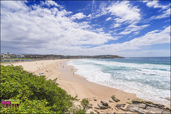 DSC_2363_X (Design Board Photography) Tags: landscapes sea bondibeach beaches designboardphotography