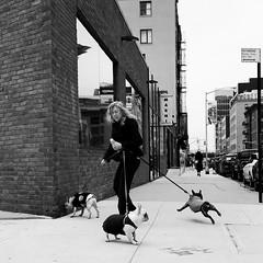 Nicole (ShelSerkin) Tags: shotoniphone hipstamatic iphone iphoneography squareformat mobilephotography streetphotography candid portrait street nyc newyork newyorkcity gothamist blackandwhite