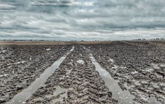 sticky situation...(HSS) (BillsExplorations) Tags: sticky mud rain gloom springthaw sky darkskies clouds illinois slimy dreary