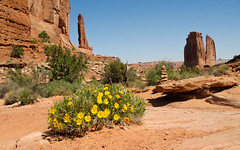 Arches National Park, USA 2011 - 03 (Manfred Lentz) Tags: usa vereinigtestaatenvonamerika utah archesnationalpark nationalpark