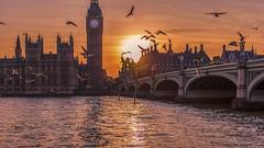 HC9Q3914-HDR-Edit-1 (rodwey2004) Tags: london landscape westminsterbridge sunset riverthames