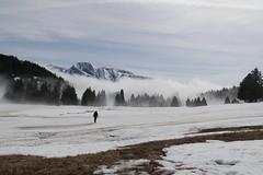 SAM_0041 (a.podkowińska) Tags: mountain spring snow thaw chamrousse paysage landscape gory wiosna snieg sciezka montagne printemps odwilz