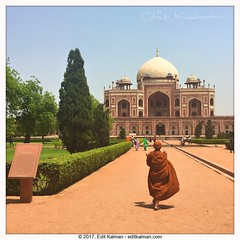 On the path (edit eye) Tags: buddha buddhism delhi heritage history houmayounstomb india monk path quote travel