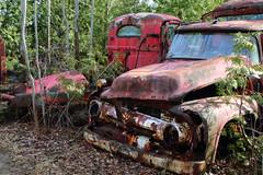 IMG_2701 (Irina Souiki) Tags: rusty crusty cars mcleansautowreckers milton ontario old oldcars