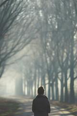 (CarolienCadoni..) Tags: sonyslta99 sony sal70200g2 70200mmf28gssmii backshot light fog foggy mist sunlight sun trees road boomkroonpad drouwen drenthe netherlands