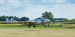 de Havilland DH.115 Vampire T.11 (tamson66) Tags: vampire airshow aircraft airplane airport
