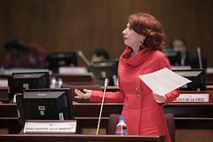 María Augusta Calle - Sesión No.445 del Pleno de la Asamblea Nacional / 19 de abril de 2017 (Asamblea Nacional del Ecuador) Tags: asambleanacional asambleaecuador sesiónno445 pleno plenodelaasamblea plenon445 445 maríaaugustacalle