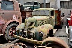 dodge D 30 (riccardo nassisi) Tags: collezione righini rust rusty scrapyard collection camion truck ruggine epave alfa romeo 950 900 fiat old car auto