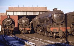 """One of Llandudno Junction shed's Royal Scots, 46155 """"The Lancer"""" catches the morning Spring sunshine at its home depot alongside other 6G based engines Standard Class 2 2-6-2T 84009, and Black 5 4-6-0s 44842 and 44760. May 1963 (stcaamekid) Tags: 6g llandudnojunction northwalescoast westerndistrict 460 stanier royalscot thelancer mpd steam 1963 black5 44842 44760 84009 standardclass2 262t tank conwayvalleyline"""