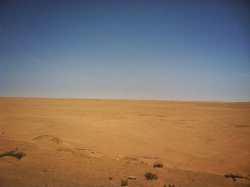Peruvian-Desert