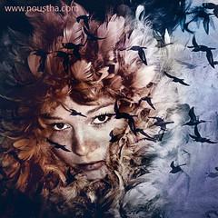 Self portrait (n_koeckhoven) Tags: selfportrait bird blauw feathers vogels blau zelfportret vliegen veren noustha