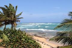 Punta Cangrejos_7436 (Stephen Wilcox - Jetwashphotos.com) Tags: travel beach sand rocks surf waves puertorico sanjuan palmtrees p