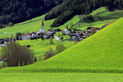 St. Jakob (mikiitaly) Tags: italy wiese kirche grn wald sdtirol altoadige stjakob wipptal frhjahr pfitschtal