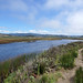 2013-09-15 09-22 Kalifornien 124 Pescadero Marsh Natural Preserve