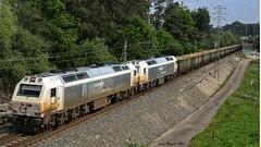 Mas madera (Juanav) Tags: santiago portugal tren madera internacional galicia susana 333 3333 tui ferrocarril renfe mercancias ealos maderero 333339 333340