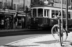 (mgkm photography) Tags: street urban blackandwhite bw monochrome bicycle 50mm nikon bokeh lisboa lisbon streetphotography gimp linux streetphoto lissabon pretoebranco blackandwhitephotography streetshot 50mm18 urbanphotography monochromephotography fotografiaurbana blackwhitephotos opensourcephotography ilustrarportugal d7000 europeanphotography streettogs streettogs