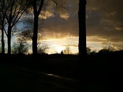 20140315_172631 (Marcel Oczkowski) Tags: sunset sky sun tree fall clouds outdoor samsung note rays sunrays