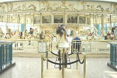 Spinning Round (flashfix) Tags: horses horse ny newyork ontario canada lines mall shopping amusement nikon ride ottawa carousel plastic hues syracuse highkey 40mm tones 2014 destinyusa d7000 nikond7000 2014inphotos scarybigmall june162014