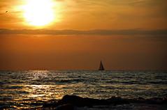 Golden Hour at Ostende-Beach (Andy von der Wurm) Tags: sunset sun nature sailboat boat europa europe sonnenuntergang belgium belgique northsea oostende sonne nordsee goldenhour segelboot belgien ostende flandern hobbyphotograph goldenestunde westflandern andreasfucke andyvonderwurm