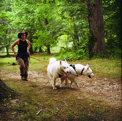 "Czar, Hudson, and Tanya Hiking 2 • <a style=""font-size:0.8em;"" href=""http://www.flickr.com/photos/96196263@N07/14367756248/"" target=""_blank"">View on Flickr</a>"