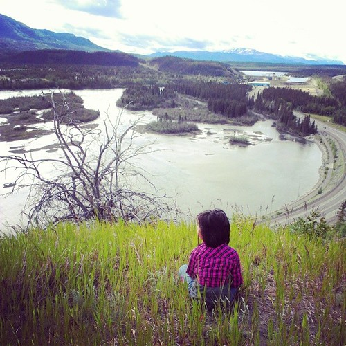 View from atop the clay cliffs of #yxy -,the #Yukon River, which flows 3,200 km from BC to Alaska.