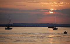 DSC_0012 (mightywight) Tags: sailing solent cowes nikond40