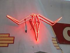 Jun 8_12 (SonyaCirillo) Tags: route66 neon longhorn tucumcarinm teepeecurios