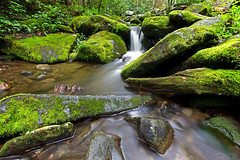Roaring Fork (trumansnare) Tags: park mountain nature canon waterfall great fork trail national motor smoky cascade roaring 6d