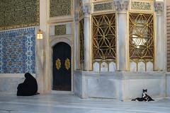 Istanbul - Eyüp (- yt -) Tags: woman black cat turkey kitten muslim istanbul traditionaldress eyüp eyüpsultanmosque